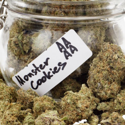 Buy Monster Cookies (AAAA) - LadyJaneExpress